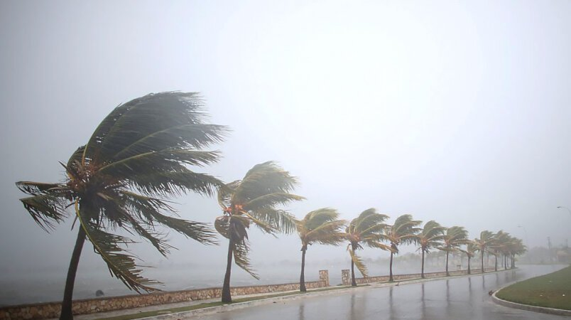 Hurricane Irma Relief Fund | Update