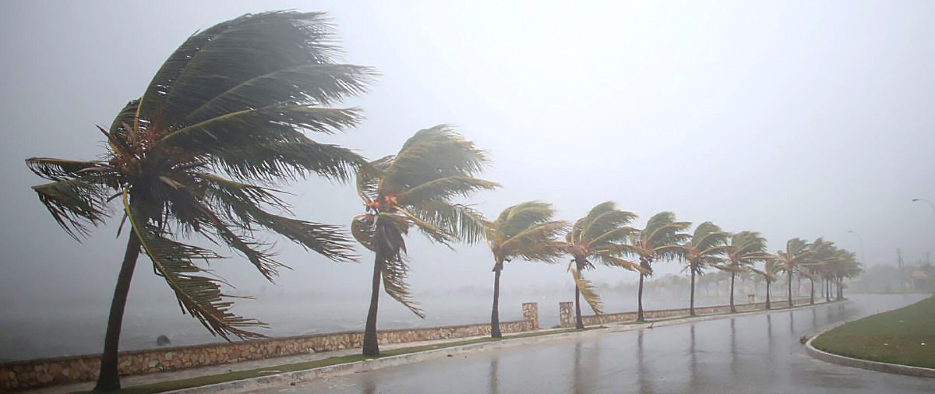 Hurricane Irma Relief Fund | Update photo 1