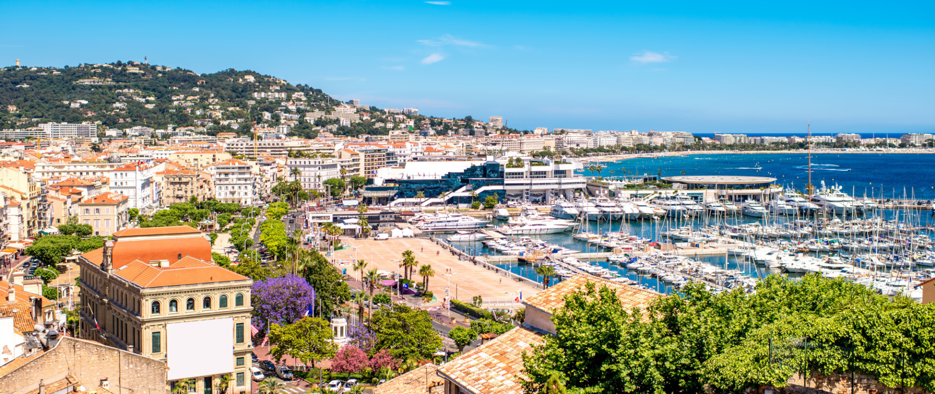 Start the show season with the Cannes Yachting Festival photo 1