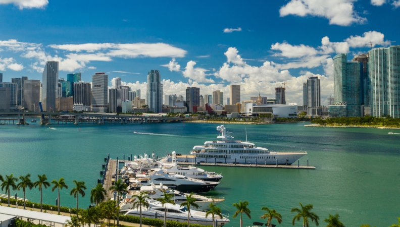 The Miami Yacht Show